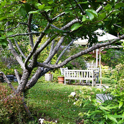 The Marston House Wiscasset Garden